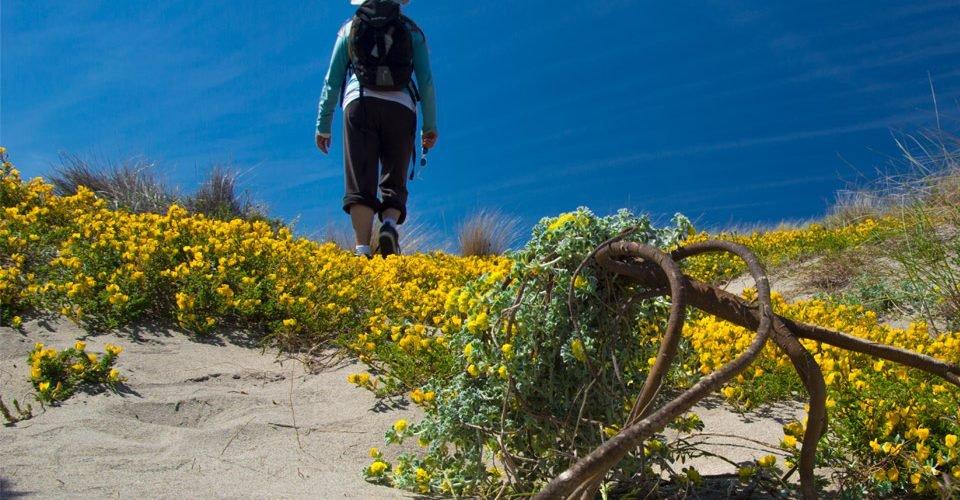 Trekking-Cabo-de-Gata---copyright-Marc-Capdevila